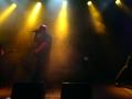 Shardless Live im Schlachthof